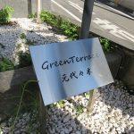 グリーンテラス元代々木